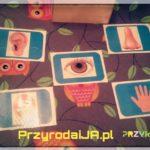 Przyroda i JA Wrocław - zajęcia dla dzieci (16)