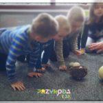 Przyroda i JA Wrocław - zajęcia dla dzieci (7)