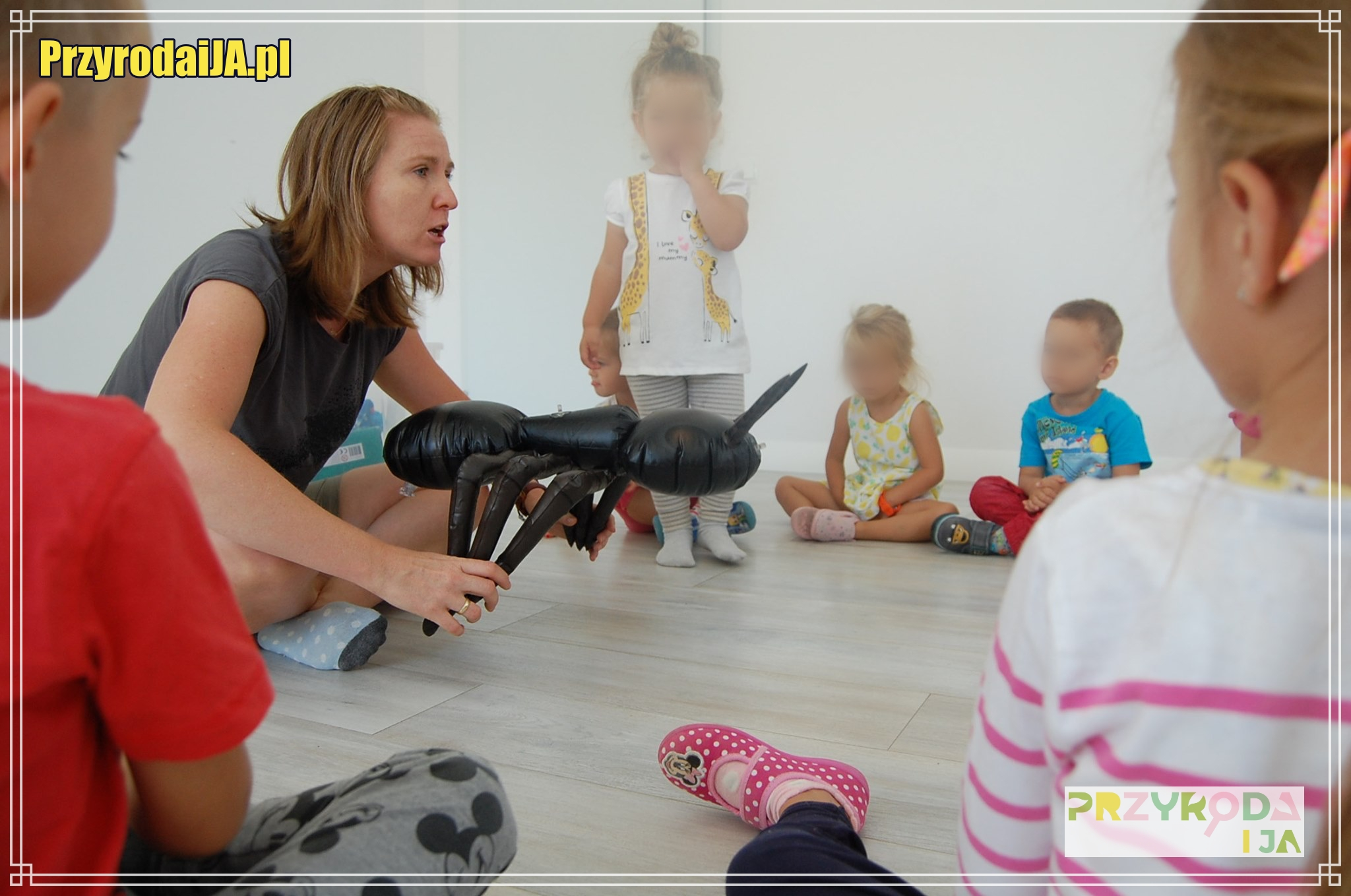 Małe i Pracowite Mrówki