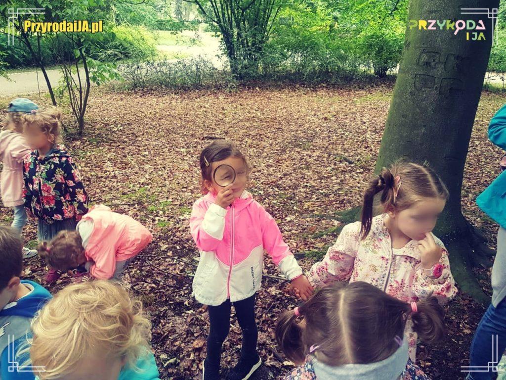 Przyroda i JA edukacja dla dzieci zajęcia terenowe 2