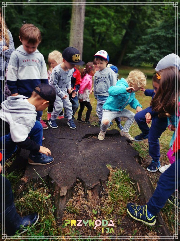 Przyroda i JA edukacja dla dzieci zajęcia terenowe 23