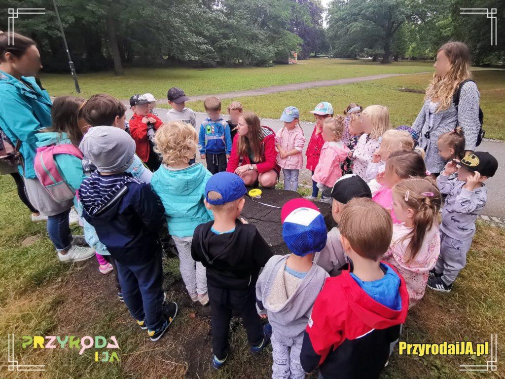 Przyroda i JA edukacja dla dzieci zajęcia terenowe 25