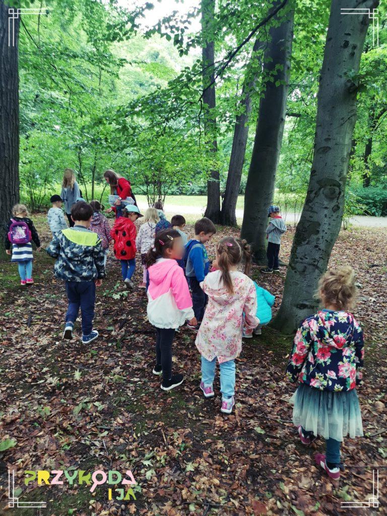Przyroda i JA edukacja dla dzieci zajęcia terenowe 28