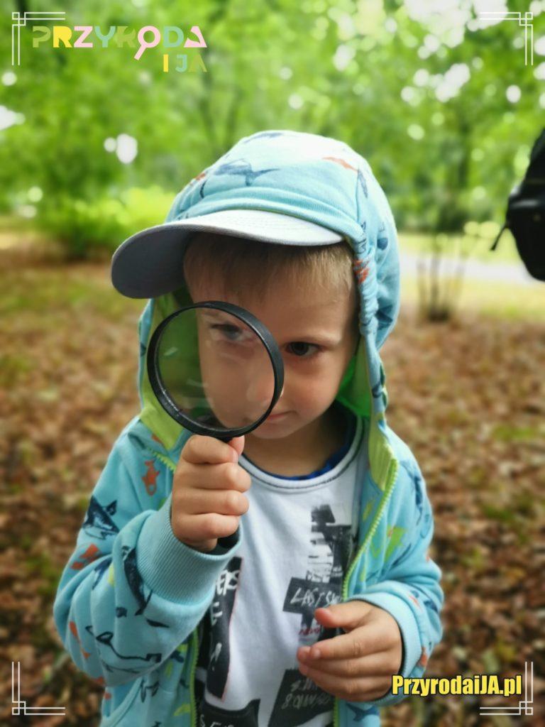 Przyroda i JA edukacja dla dzieci zajęcia terenowe 29