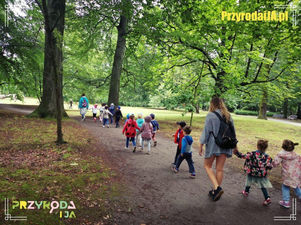 Przyroda i JA edukacja dla dzieci zajęcia terenowe 3