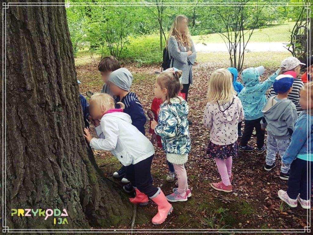 Przyroda i JA edukacja dla dzieci zajęcia terenowe 40