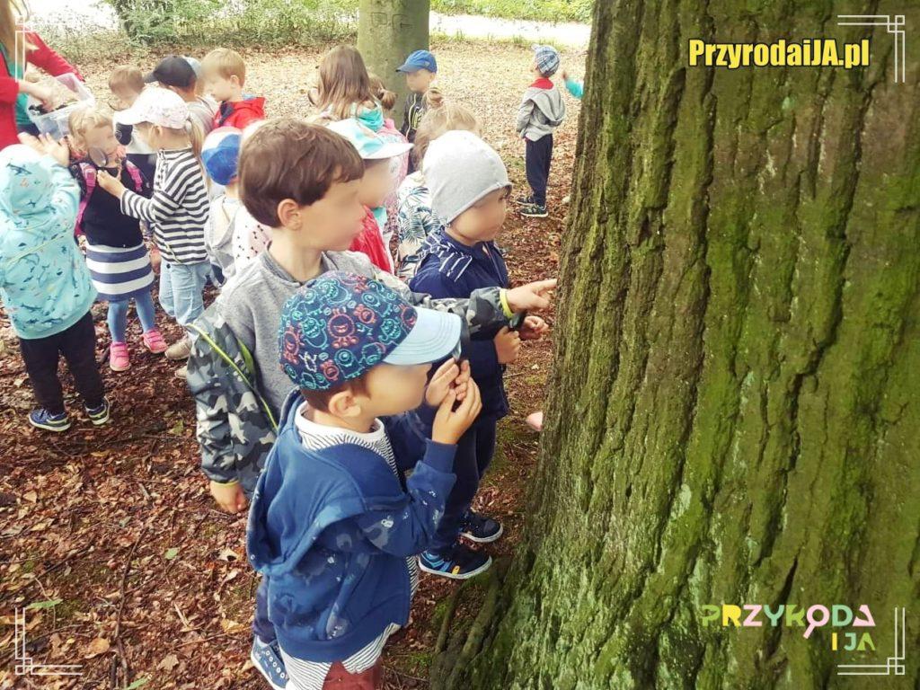 Przyroda i JA edukacja dla dzieci zajęcia terenowe 41