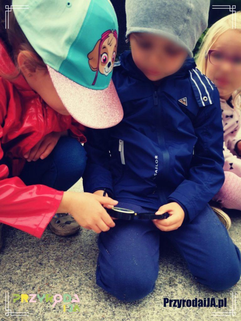 Przyroda i JA edukacja dla dzieci zajęcia terenowe 9