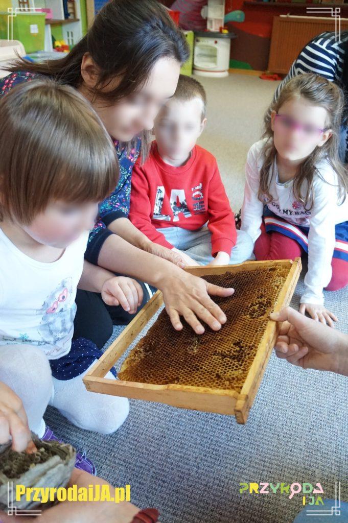 Przyroda i JA edukacja dzieci i młodzieży naśladowanie 11