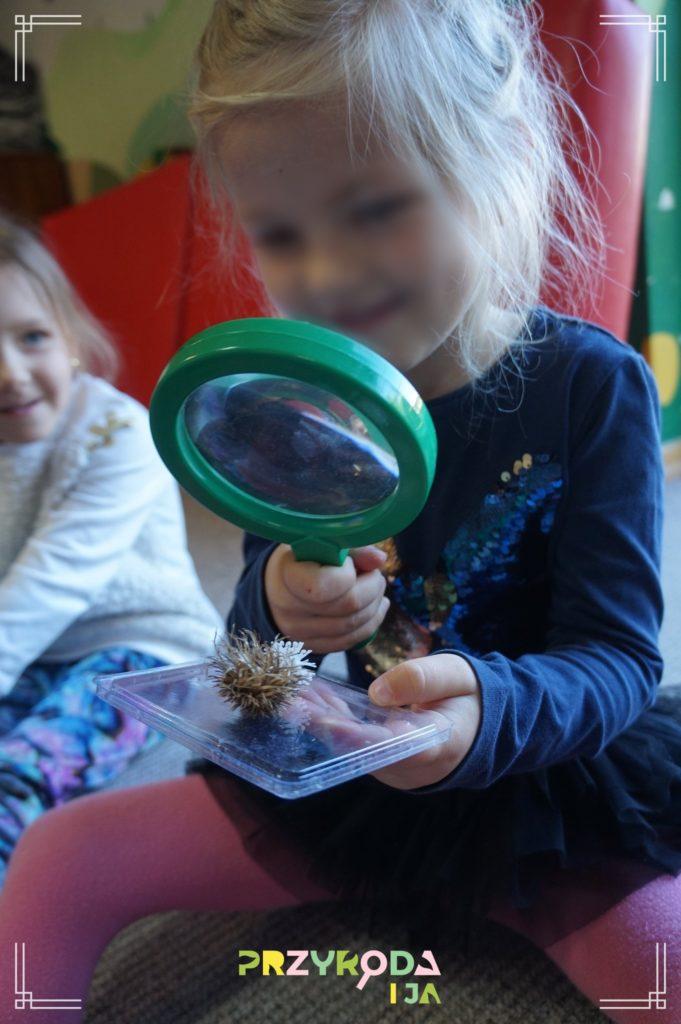 Przyroda i JA edukacja dzieci i młodzieży naśladowanie 17