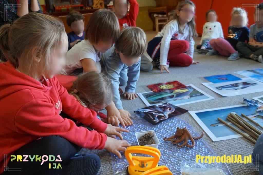 Przyroda i JA edukacja dzieci i młodzieży naśladowanie 3