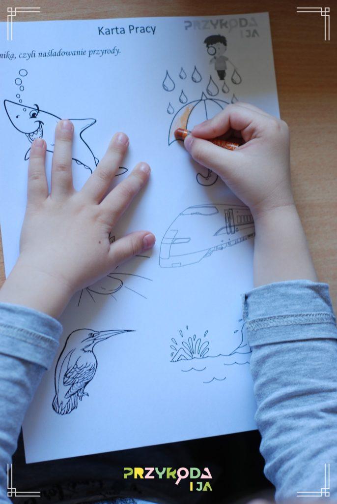 Przyroda i JA edukacja dzieci i młodzieży naśladowanie 34