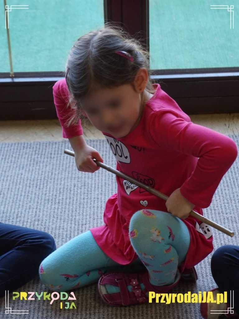 Przyroda i JA edukacja dzieci i młodzieży naśladowanie 5