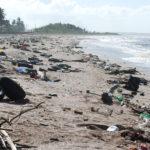 Przyroda i JA - Zanieczyszczona planeta - co zanieczyszcza wodę, powietrze i glebę?